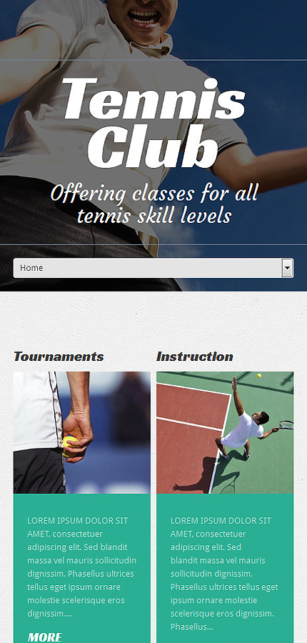 WordPress Theme/Template 50528 Main Page Screenshot