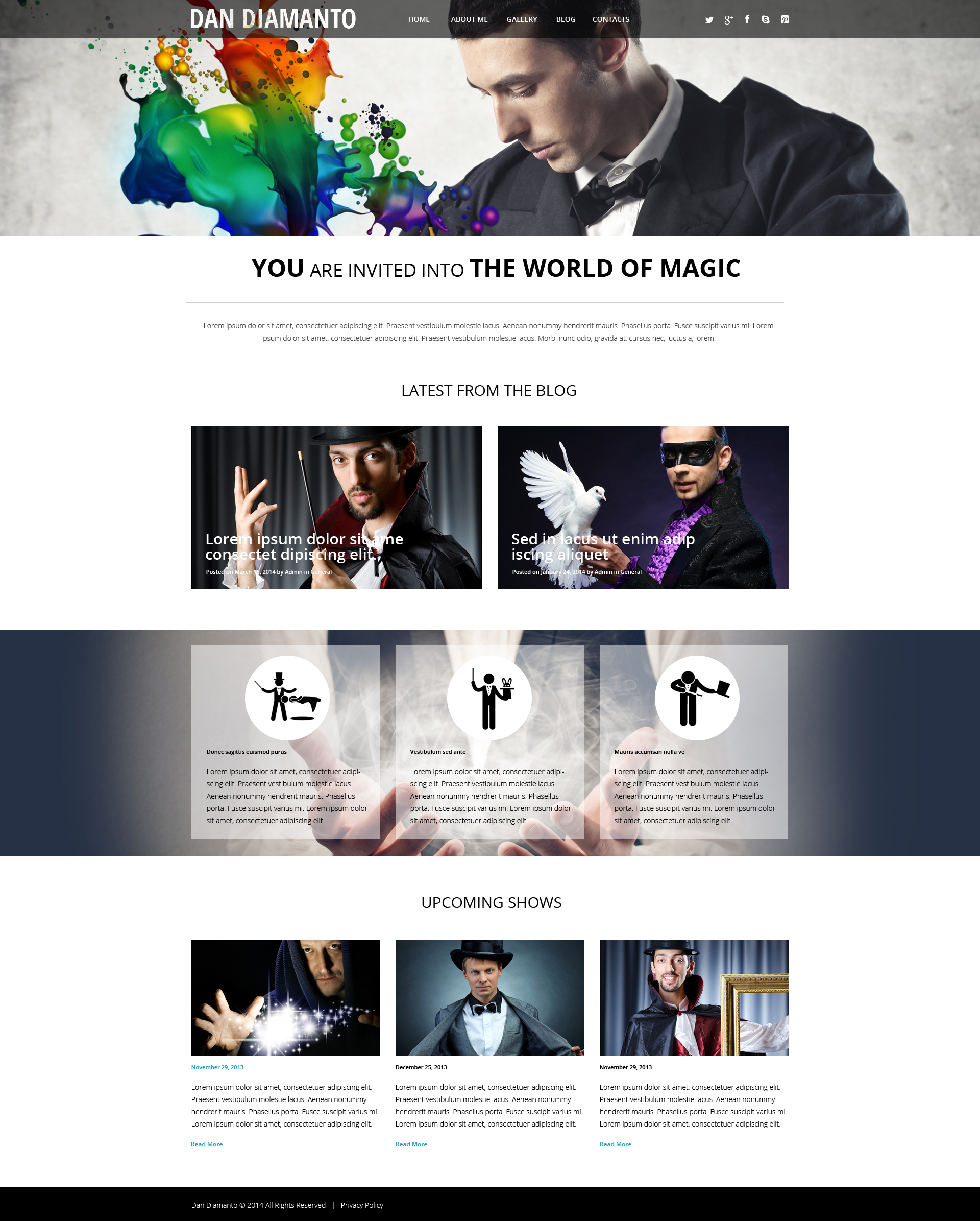 the world of magic wordpress theme 50532