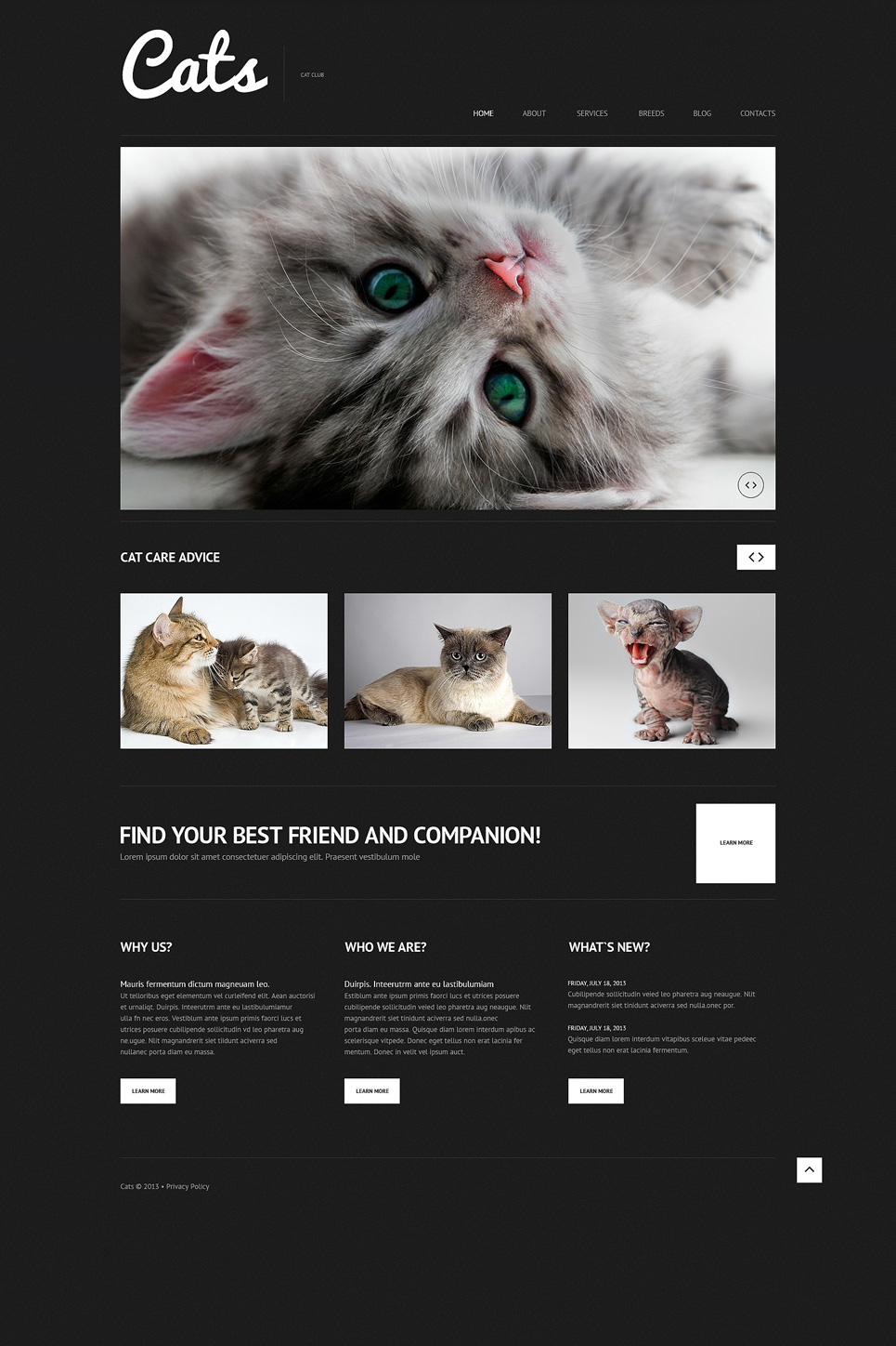 Animals & Pets WordPress Theme No. 50613 WordPress Theme