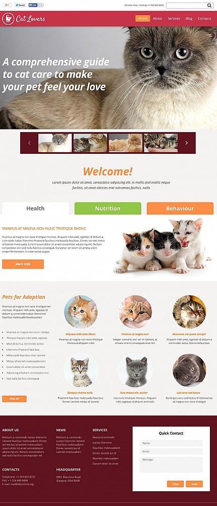 ADOBE Photoshop Template 50656 Home Page Screenshot