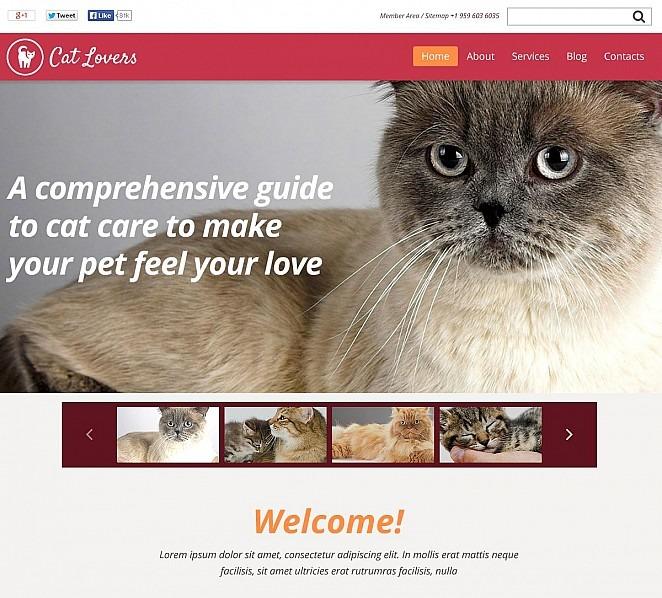 Flash CMS Vorlage für Katze New Screenshots BIG