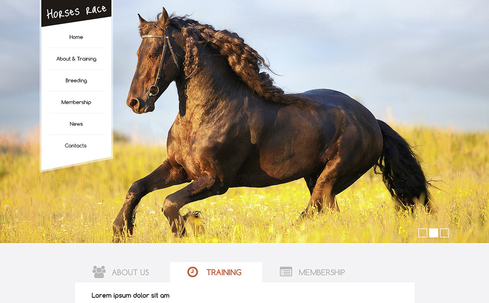 Lóverseny Drupal sablon New Screenshots BIG