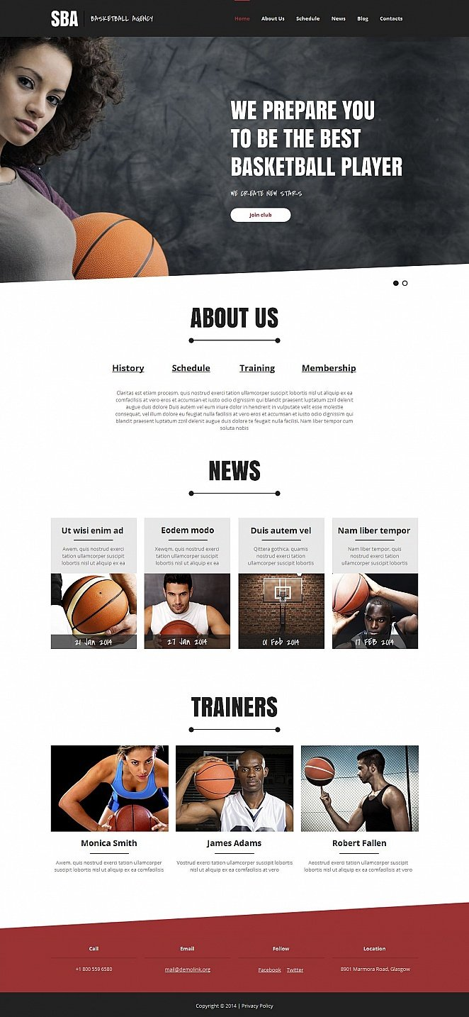 Basketball Agency Website Template with Creative Design - image