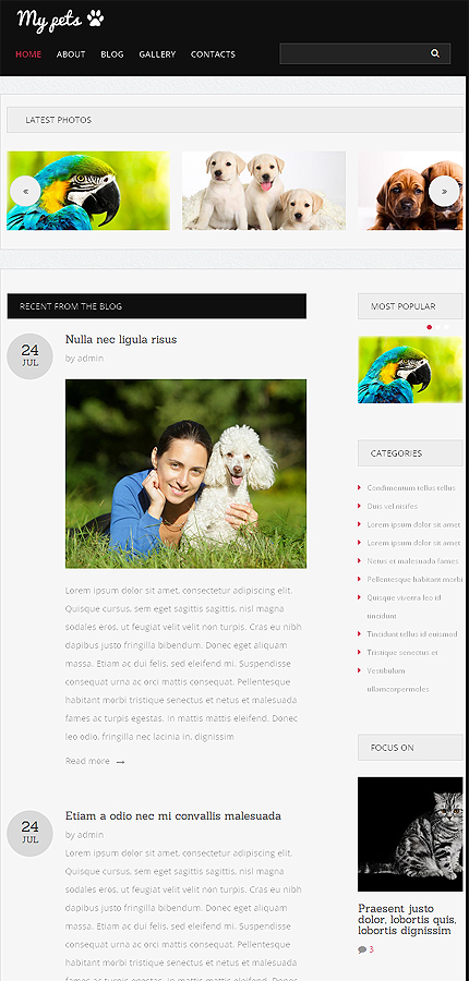 Drupal Template 50962 Main Page Screenshot