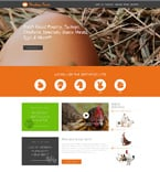 Agriculture Website  Template 51057