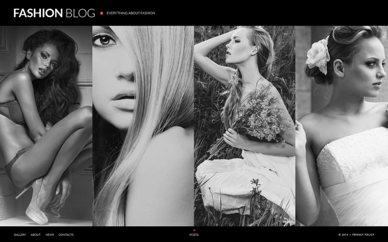 Fashion Blog Website Template New Screenshots BIG