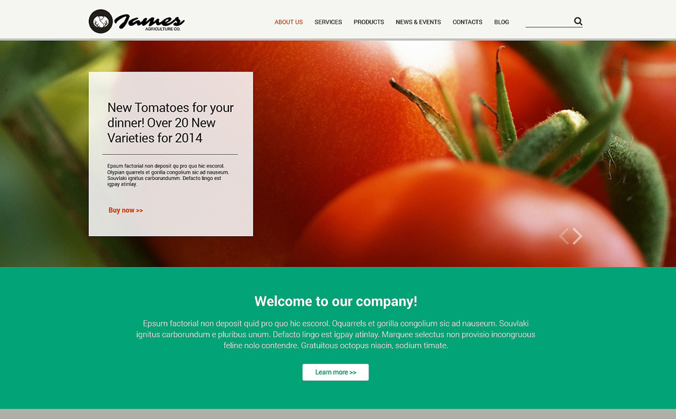 Modèle Web adaptatif  pour site de fruits New Screenshots BIG