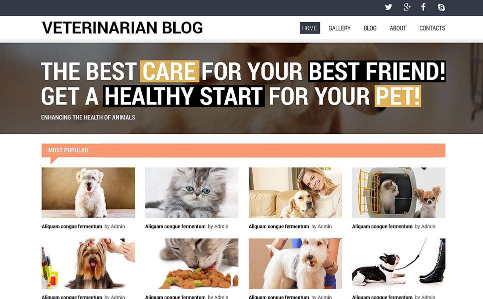 Responsive Website Vorlage für Tierarzt  New Screenshots BIG