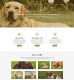 Animals & Pets Joomla  Template 51221
