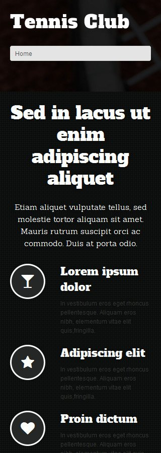 WordPress Theme/Template 51294 Main Page Screenshot