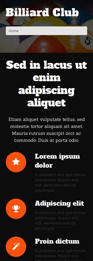 WordPress Theme/Template 51295 Main Page Screenshot