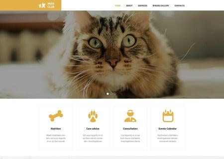 Animals & Pets Responsive