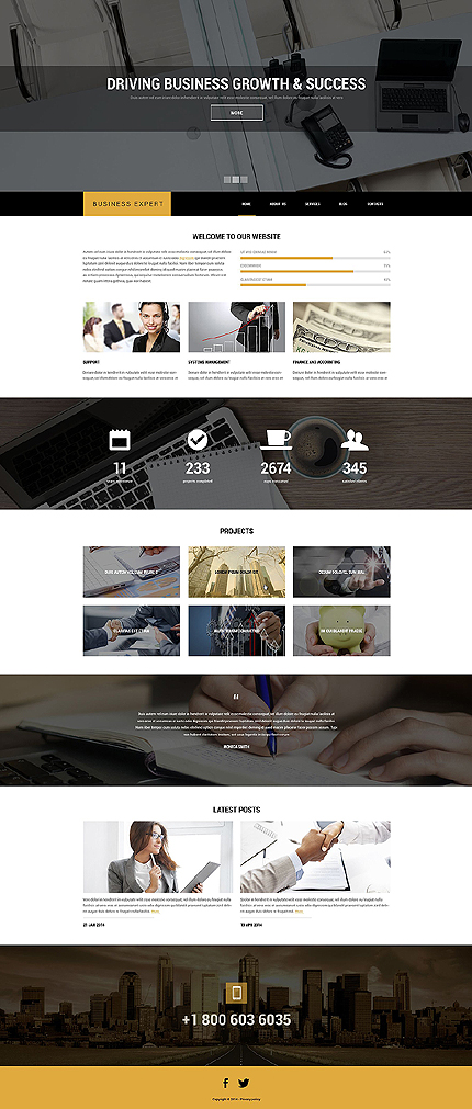 Drupal Template 51387 Main Page Screenshot