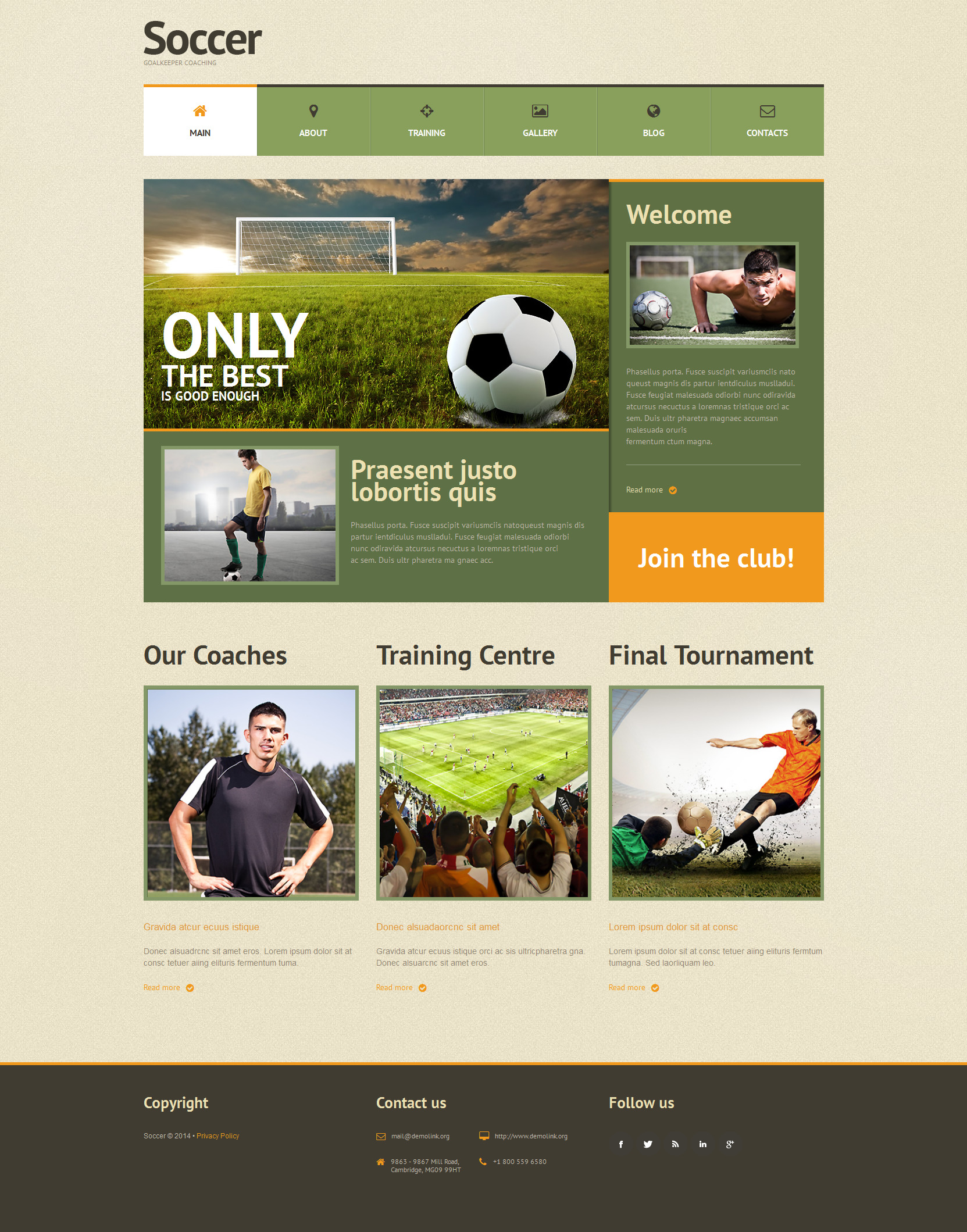 Football Responsive WordPress Theme - screenshot