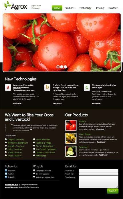 ADOBE Photoshop Template 51529 Home Page Screenshot