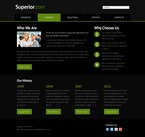 Website  Template 51545