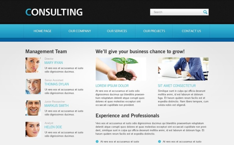 Free website template for consulting business accmission