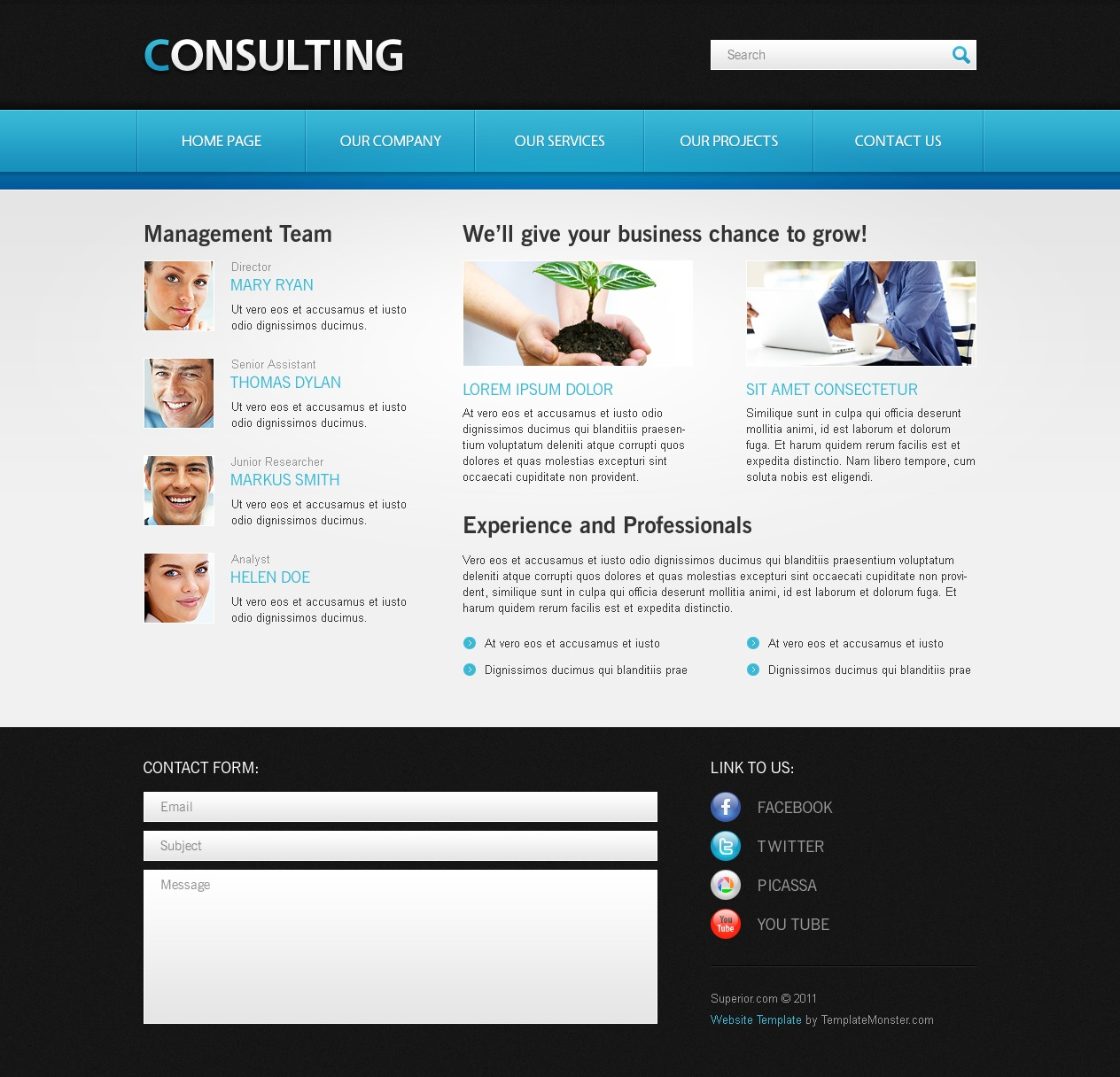 Free website template for consulting business free website template for consulting business website template new screenshots big zoom in cheaphphosting Images