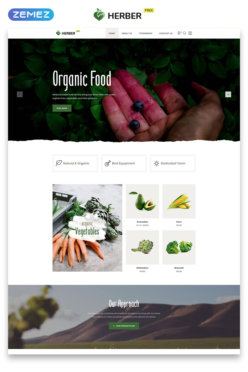 """""""Free Website Template for Food Delivery"""" 响应式网页模板 #51557 - 截图"""