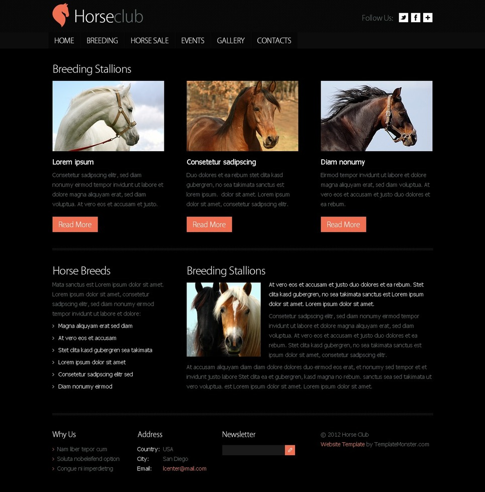 Free Website Template Horse Club New Screenshots