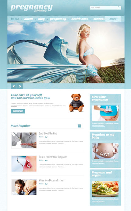 ADOBE Photoshop Template 51633 Home Page Screenshot