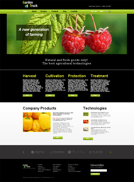 ADOBE Photoshop Template 51644 Home Page Screenshot