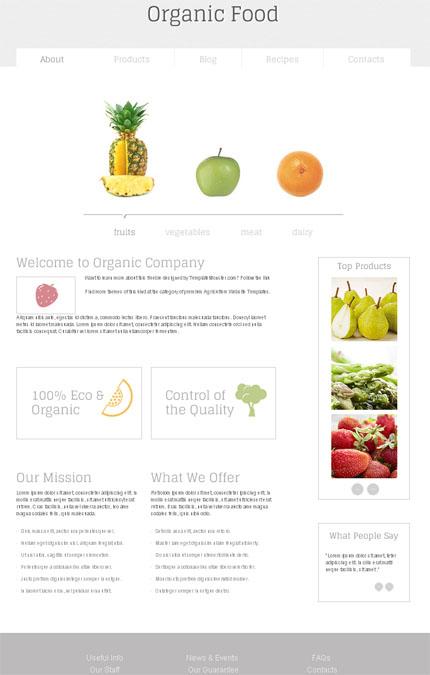 ADOBE Photoshop Template 51664 Home Page Screenshot