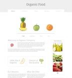 Website  Template 51664
