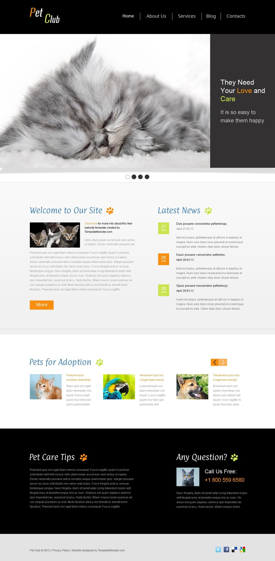 website template pet site