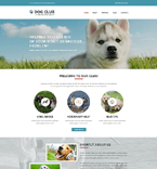 Website  Template 51752