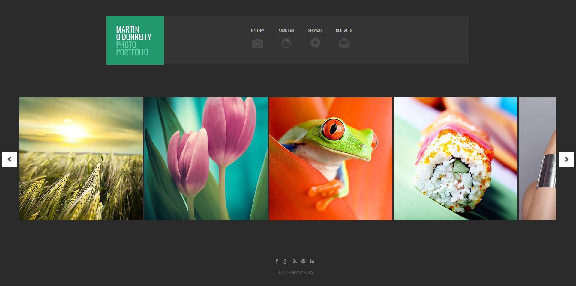 Photographer Portfolio Moto CMS HTML Template - screenshot