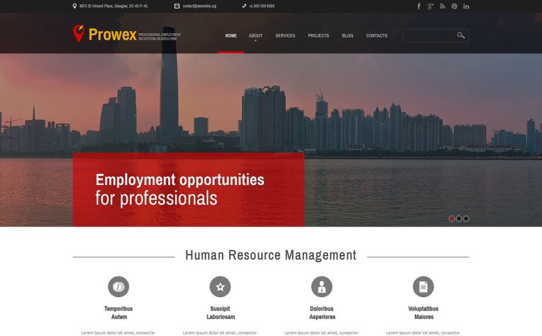 Professional Employment WordPress Theme