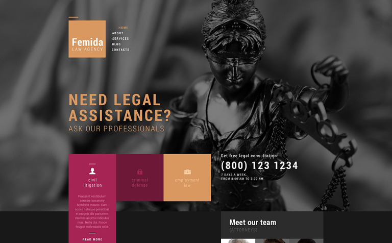 Public Justice Agency WordPress Theme