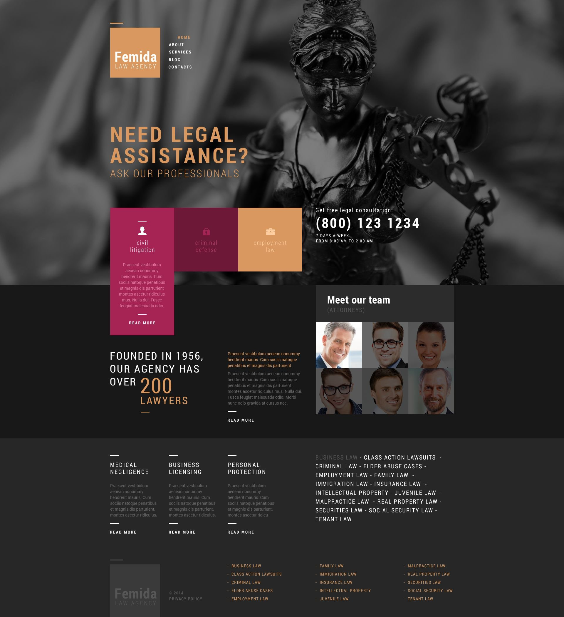 """Responzivní WordPress motiv """"Public Justice Agency"""" #51769"""