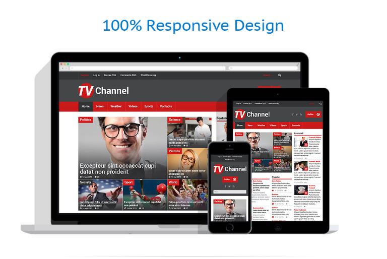 TV Channel Responsive WordPress Theme #51867