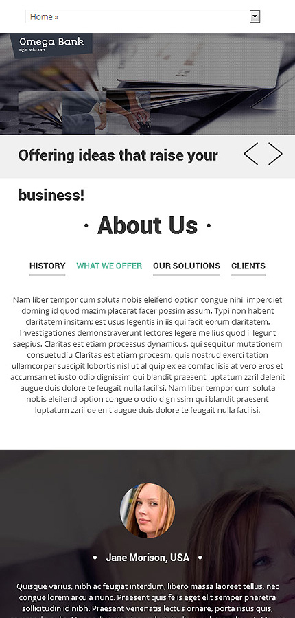 Drupal Template 51898 Main Page Screenshot