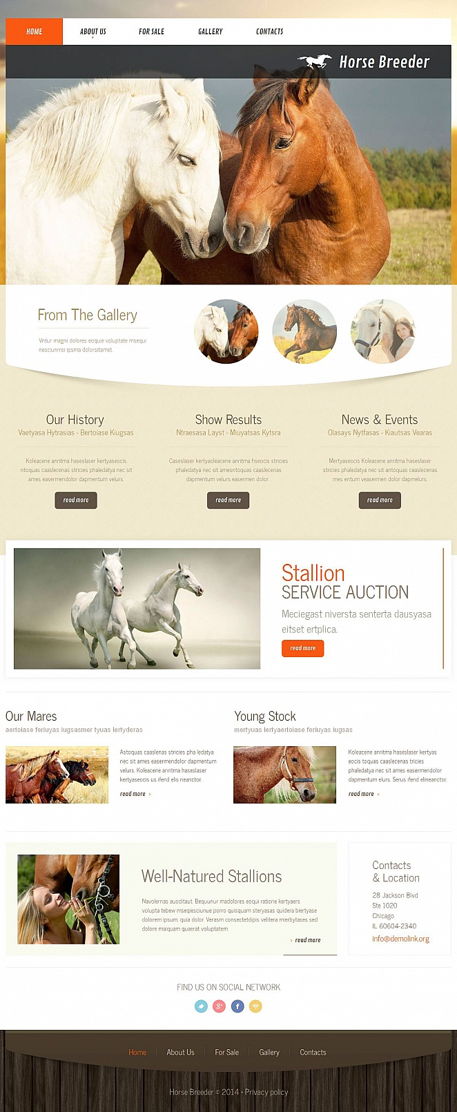 Web Template to Make a Website for Horse Breeder - image