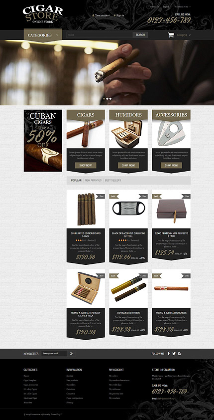 ADOBE Photoshop Template 51993 Home Page Screenshot