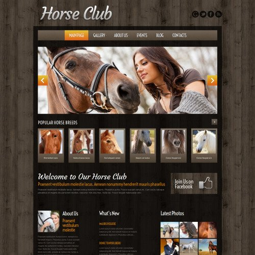 Horse Club - WordPress Template based on Bootstrap
