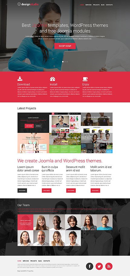 WordPress Theme/Template 52172 Main Page Screenshot
