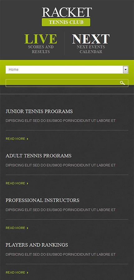 Joomla Theme/Template 52315 Main Page Screenshot