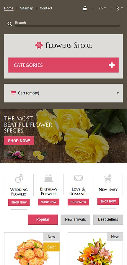 ADOBE Photoshop Template 52387 Home Page Screenshot