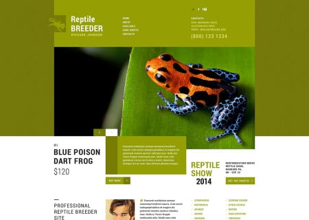 Exotic Pets Responsive
