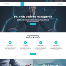 Globaly Full Cycle Business Management Consulting Responsive Wpml Ready WordPress Theme 52382 Free