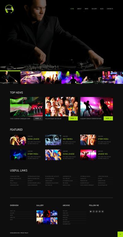 DJ Responsive WordPress模板