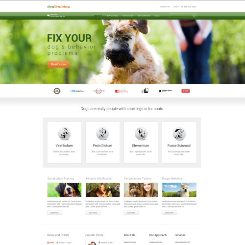 Dog Training - WordPress Template based on Bootstrap
