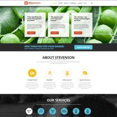 One Page Joomla Templates   TemplateMonster