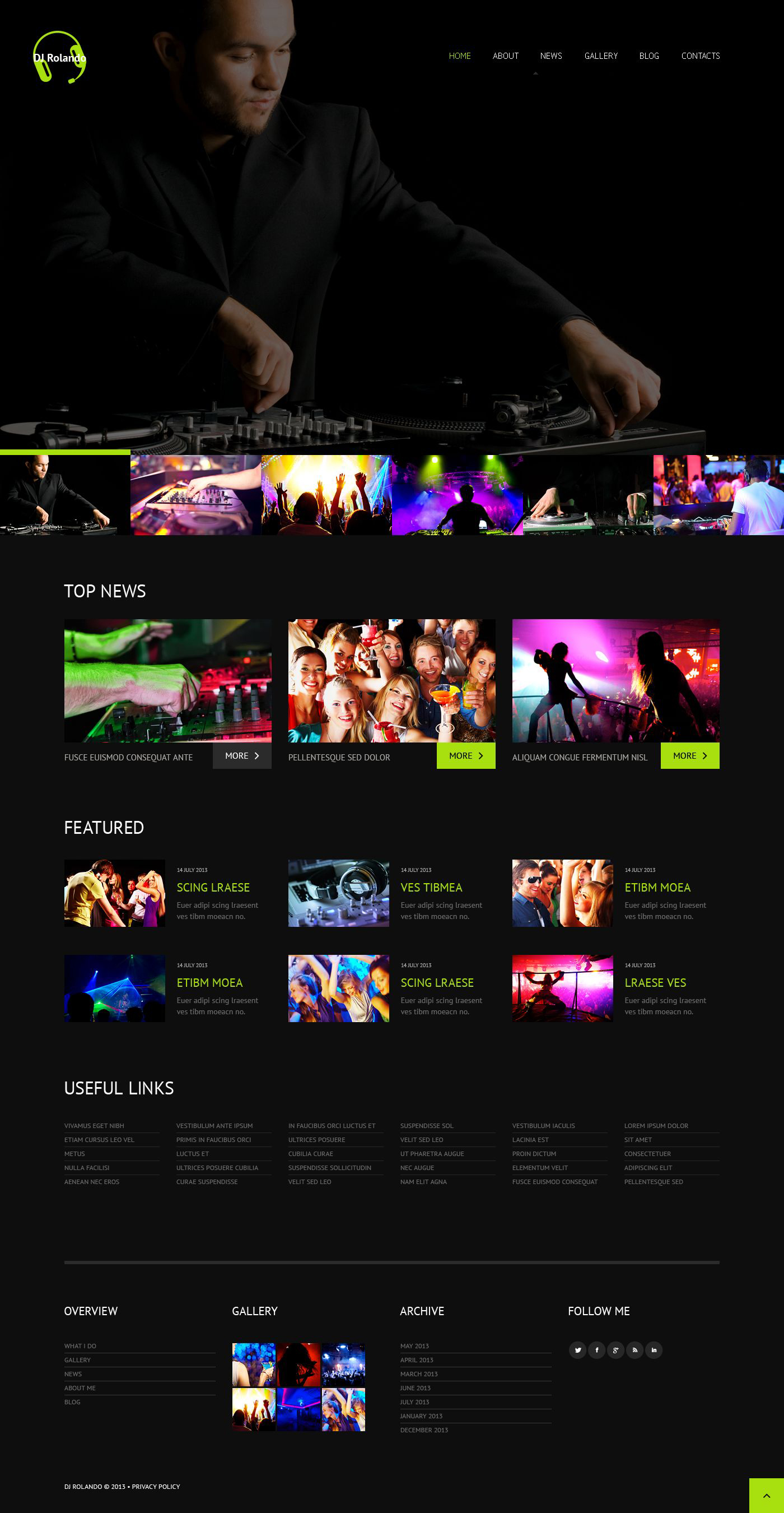 Responsives WordPress Theme für Musik Homepage #52476 - Screenshot