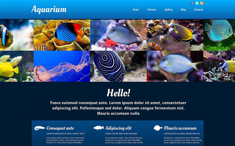 Responsive Website Vorlage für Fisch  New Screenshots BIG