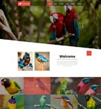 Animals & Pets Website  Template 52570